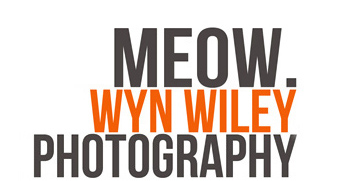Wyn Wiley Photography logo